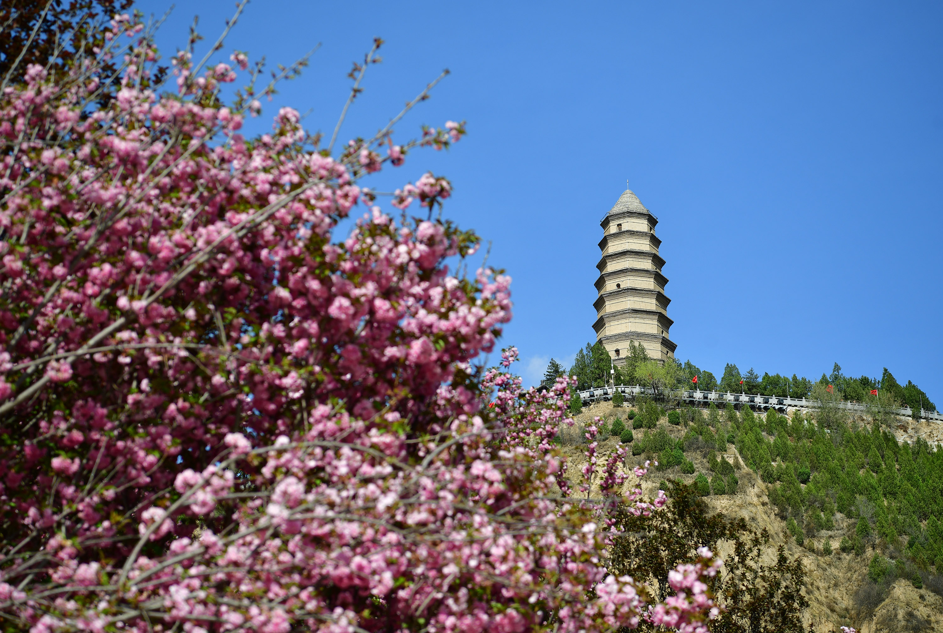 File Photo: The Baota Mountain scenic area is seen with blooming flowers in the foreground in Yan